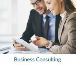 Business Consulting, Business Planning, Business Services, Business Strategy